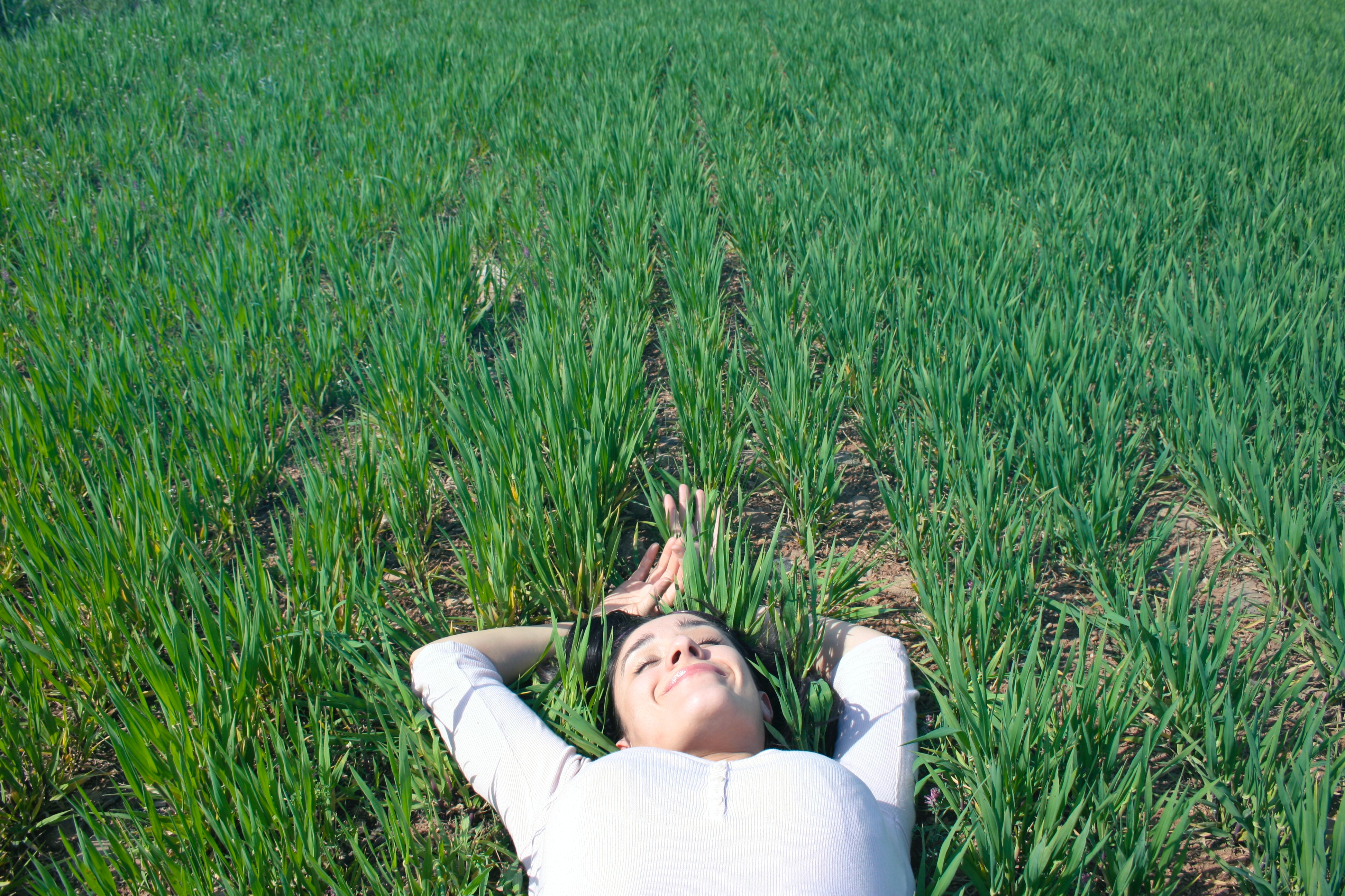 Мучает бессонница - как уснуть. Способы лечения бессонницы