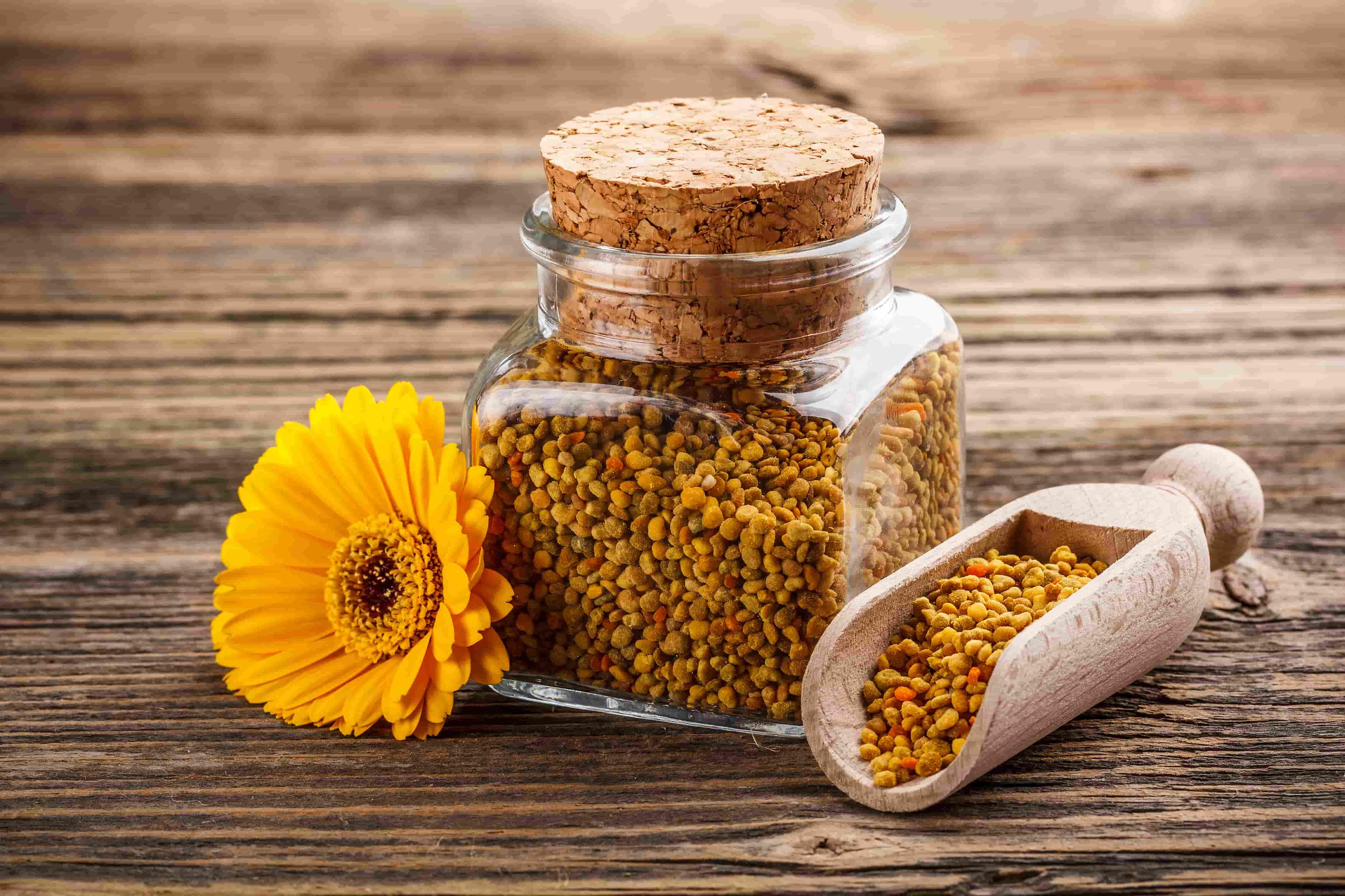 Пчелиная пыльца - суперфуд для похудения. Ее полезные свойства, от чего она помогает