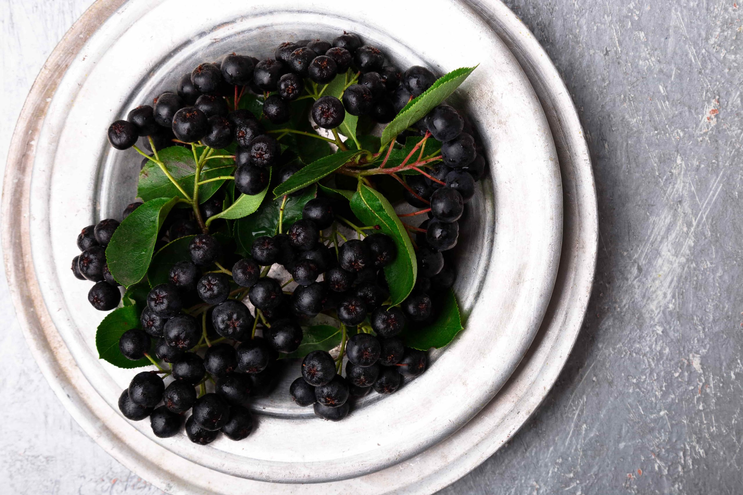 Черноплодная рябина - суперфуд, замедляющий процесс старения. Чем она полезна для здоровья