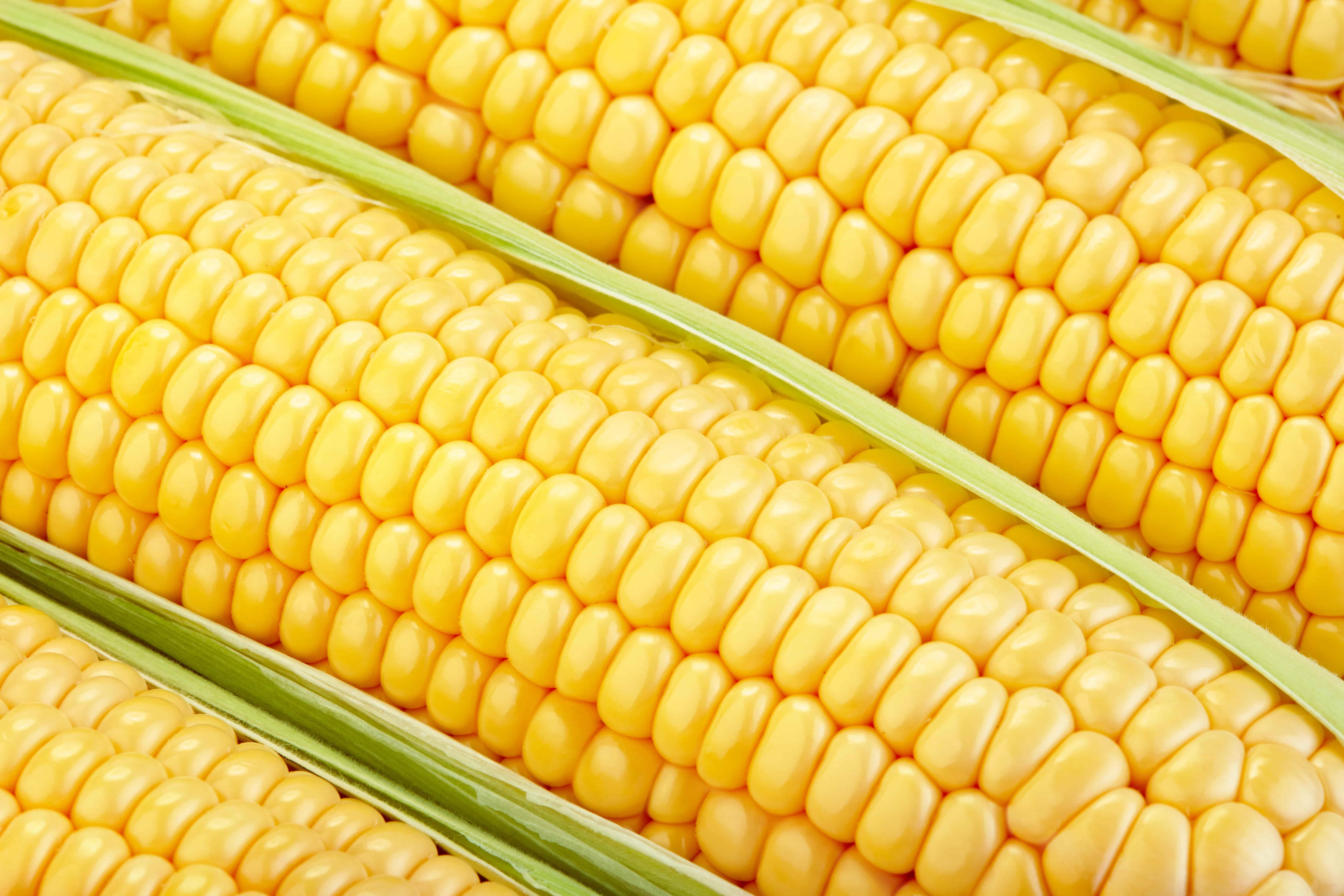 Салаты с печенью и кукурузой - рецепты с пошаговым приготовлением и фото