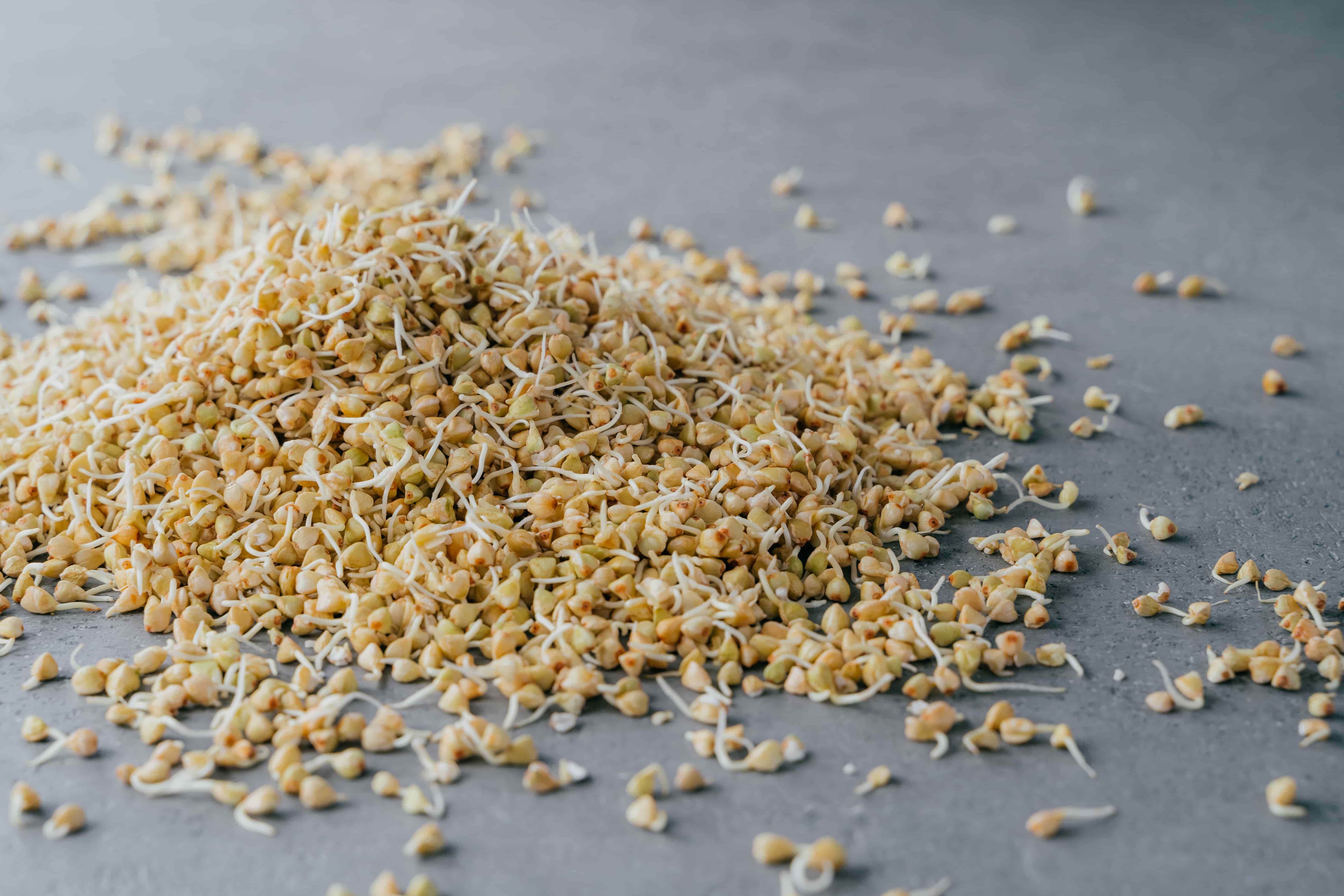Рецепты для сыроедения для начинающих с пошаговым приготовлением